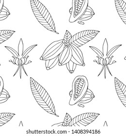 Sketch hand drawn cacao pattern. Natural line background of the cacao beans, flowers.