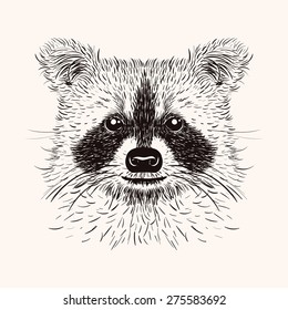 Sketch liner raccoon. Hand drawn  illustration in doodle style. Engraving design for tattoos or print.
