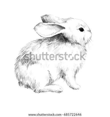 Royalty Free Stock Illustration Of Sketch Rabbit Small Furry Pet