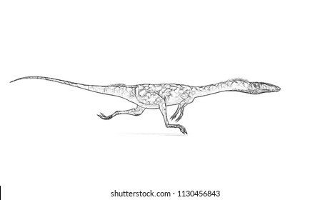 sketch of running coelophysis
