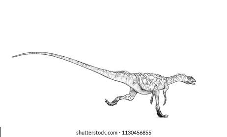 sketch of running coelophysis
