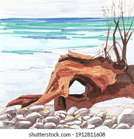 Sketch of the seashore with a brown snag of a tree and branches, felt-tip pens, pen. Suitable for postcards, promotional items, painting techniques.
