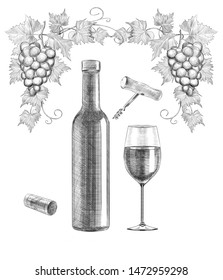 Sketch of wine still life on white background. engraving or drawing.