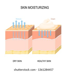 Skin moisturizing. Dry and healthy skin with cream, foam or lotion. illustration for medical, skin care, biological, educational and science use