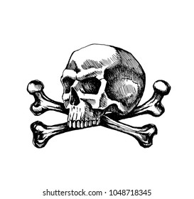 Skull and crossbones. Sketch vector hand drawn for tattoo illustrations. The symbol of life and death.