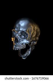 SKULL HUMAN HEAD 3D RENDER
