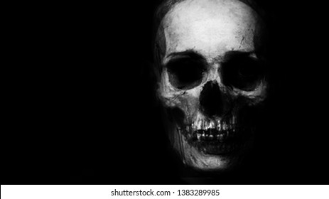 Skull Isolated On Black Background. Design for t-shirt print with skull. Halloween scary wallpaper.