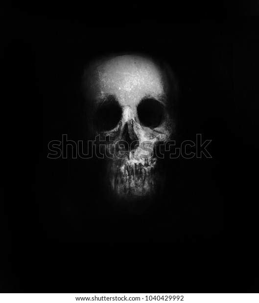 Skull Isolated On Black Background Scary Stock Illustration