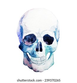 skull, watercolor, element