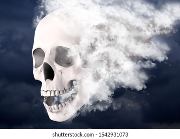 Skull wrapped in the mists of time - 3D