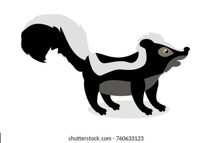 Skunk cartoon character. Cute Skunk  flat  isolated on white background. North America and Eurasia fauna. Skunk icon. Animal illustration for zoo ad, nature concept, children book illustrating