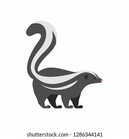 Skunk. isolated on white background
