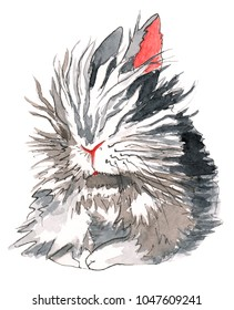Sleepy and fluffy lion-head rabbit with grey, brown, black, and white fir.