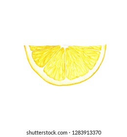 slice of yellow lemon with green leaf drawing in watercolor at white background, hand drawn botanical illustration