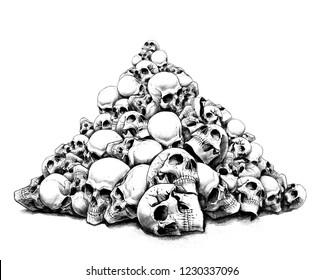 a slide of human skulls