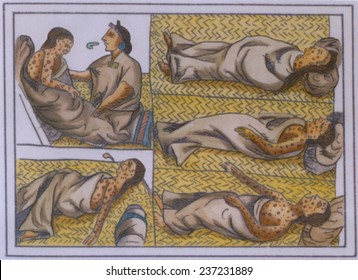 Smallpox was introduced into Mexico by the Spanish expedition of Panfilo de Narvaez and raged through the Aztec capital Tenochtitlan in late 1520.