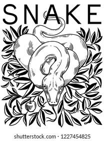snake, apple, Bible Snake, black and white