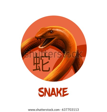 Snake chinese horoscope character isolated on white background. Symbol Of New Year 2025. Reptile animal in round circle with hieroglyphic sign, digital art realistic illustration, greeting card design