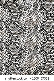 snake pattern piton skin animal