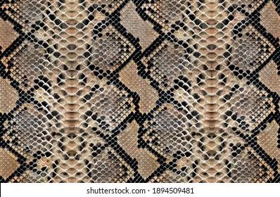 Snake skin pattern animal leather design seamless elegance