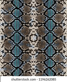 Snake skin print background pattern.Animal print.