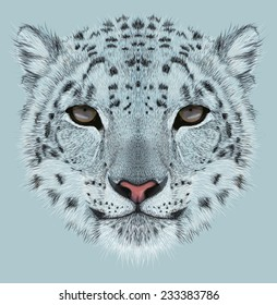 Snow leopard animal cute face. Illustrated Asian Irbis head portrait. Realistic fur portrait of snow wild spotted panther isolated on blue background.