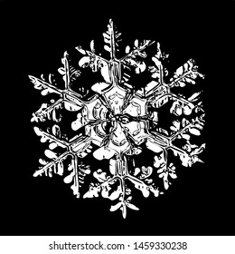 Snowflake isolated on black background. Illustration based on macro photo of real snow crystal: beautiful stellar dendrite with complex, elegant arms, ornate shape and glossy, relief surface.