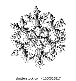 Snowflake isolated on white background. This illustration based on macro photo of real snow crystal: complex stellar dendrite with fine hexagonal symmetry, ornate shape and thin, elegant arms.