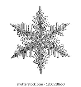 Snowflake isolated on white background. This illustration based on macro photo of real snow crystal: small stellar dendrite with good hexagonal symmetry, elegant shape and six thin, long arms.