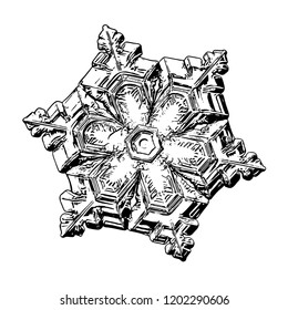 Snowflake isolated on white background. This illustration based on macro photo of real snow crystal: elegant star plate with short, simple arms, relief surface and complex inner details.