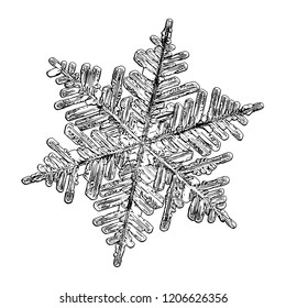 Snowflake isolated on white background. This illustration based on macro photo of real snow crystal: elegant stellar dendrite with hexagonal symmetry, complex inner structure and six ornate arms.