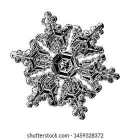 Snowflake isolated on white background. Illustration based on macro photo of real snow crystal: small, elegant star plate with six short, broad arms, glossy relief surface and complex inner details.