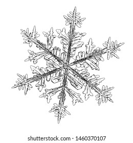Snowflake isolated on white background. Illustration based on macro photo of real snow crystal: complex stellar dendrite with fine hexagonal symmetry, ornate shape and six thin, elegant arms.