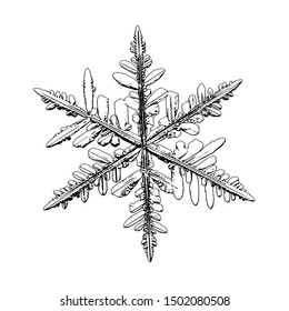 Snowflake isolated on white background. Illustration based on macro photo of real snow crystal: elegant stellar dendrite with fine hexagonal symmetry, complex inner details and six thin, ornate arms.