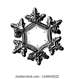Snowflake on white background. This illustration based on macro photo of real snow crystal: beautiful star plate with six short, relief arms and large, flat and empty central hexagon.