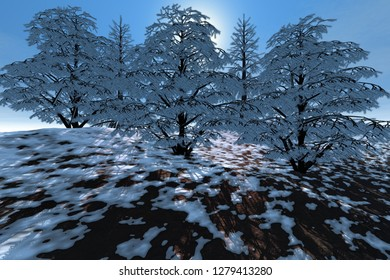 Snowy trees, 3d rendering, a winter landscape, sun rays through the leaves and a blue sky.