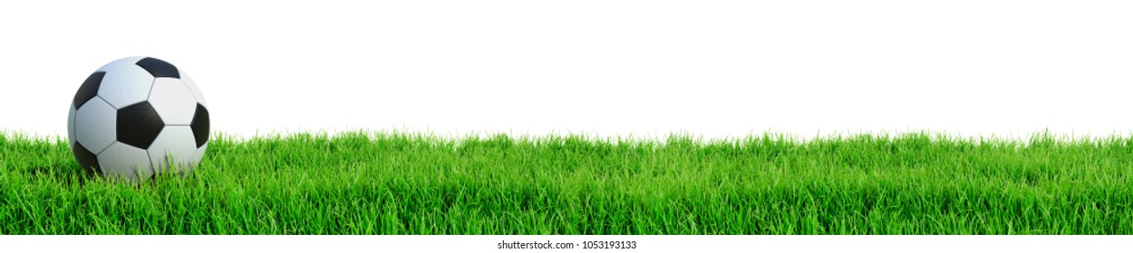Soccer ball on grass isolated on white background 3D rendering
