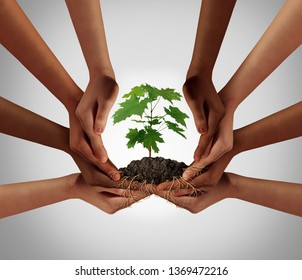 Social community cooperation concept and group crowdfunding investment symbol as a team of diverse hands nurturing a sapling tree with roots in a 3D illustration style.
