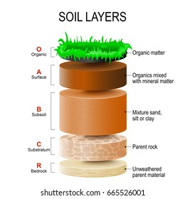 soil layers. Soil Formation and Soil Horizons. Soil is a mixture of plant residue and fine mineral particles, which form layers.