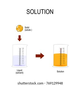 solution is a homogeneous mixture. Substance dissolved in another substance. Solid in liquid. Solubility chemistry. illustration