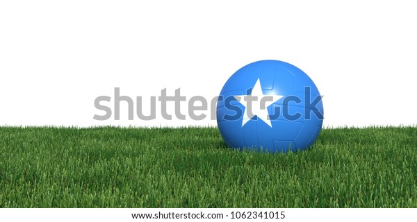Somalia Somali flag soccer ball lying in grass, isolated on white background. 3D Rendering, Illustration.