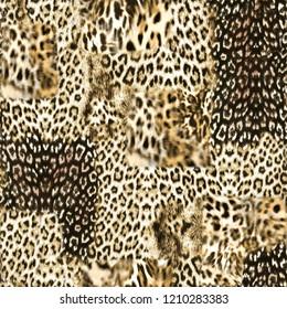 sorunsuz afrika tüylü leopar deseni