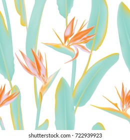 South African flowering plant, jungle leaves. Seamless pattern with Strelitzia Reginae blossom also known as crane flower or bird of paradise. Background illustration, fabric print, textile.