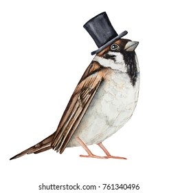 Sparrow bird dressed in black top hat. Invitation card, ticket, design, poster, label, badge, decoration, greeting element character. Hand drawn watercolour sketch drawing, isolated, white background.