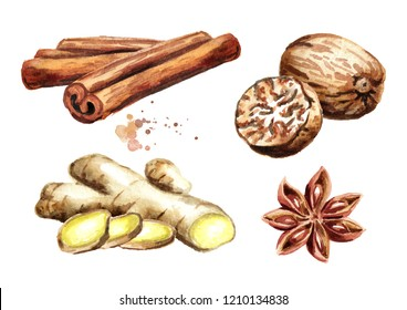 Spices set with ginger, cinnamon sticks, star anise and nutmeg. Watercolor hand drawn illustration isolated on white background
