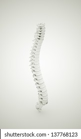 Spine rendered black and white