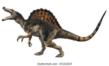 Spinosaurus 3D render.