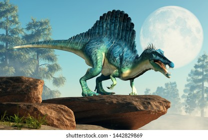 A spinosaurus on a cliff by the moon. Spinosaurus was semi-aquatic dinosaur from the Cretaceous period. It was one of the largest carnivorous dinos.  3D Rendering