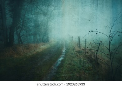 A spooky country path next to a forest and fields in the English countryside on a foggy winters day. With a grunge, artistic, edit
