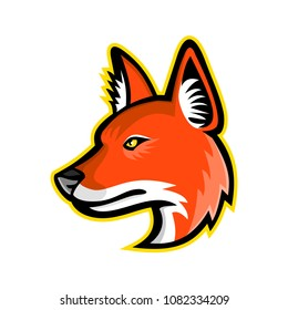 Sports mascot icon illustration of head of a dhole, Asiatic wild dog, Indian wild dog, whistling dog, red dog or mountain wolf, a canid native to Asia viewed from side in retro style.